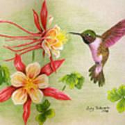Hummingbird's Delight Art Print