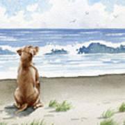 Hungarian Vizsla At The Beach Art Print