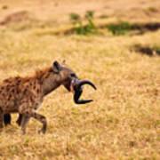 Hungry Hyena Art Print