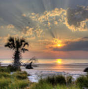 Hunting Island Sc Sunrise Palm Art Print