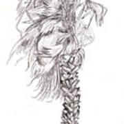 Hurrracane Winds Art Print