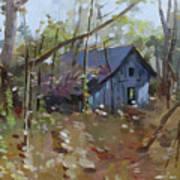 Hut In Woods Art Print