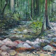 Hutan Perdic Forest Malaysia 2016 Art Print