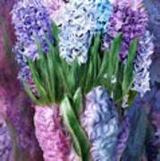 Hyacinth In Hyacinth Vase 1 Art Print