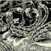 Hydra Art Print