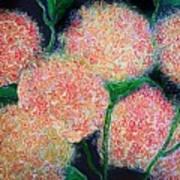 Hydrangea Inspiration Art Print