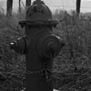 Hydrant Art Print