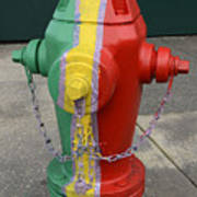 Hydrant With A Facelift Art Print