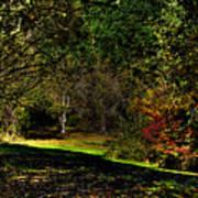 Hylebos In Autumn Art Print
