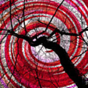 Hypnotic Nature Art Print