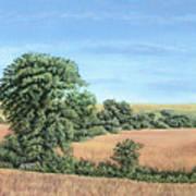 I-74 Soybean Field Art Print