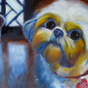 I Am A Therapy Dog Art Print