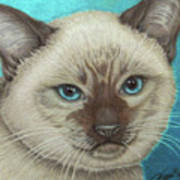 I Am Siamese If You Please Art Print