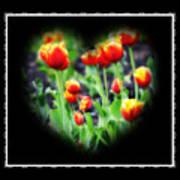 I Heart Tulips - Black Background Art Print