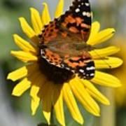I Love Your Nectar Art Print