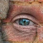 I Spy With My Little Eye Art Print