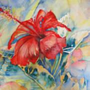 Ibiscus Art Print