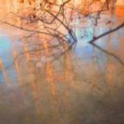 Ice Reflections 2 Art Print