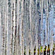 Ice Sickle Curtains Art Print