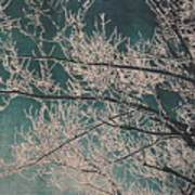 Ice Storm Branches - Blue Art Print
