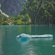 Ice Tracy Arm Alaska Art Print