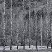Iceland Landscape # 10 Art Print