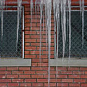 Icicles 2 - In Front Of Windows Off Red Brick Bldg. Art Print
