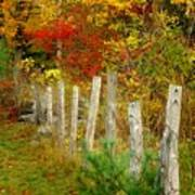 If I Could Paint No 1 - New England Fall Fence Art Print
