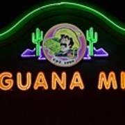 Iguana Mia Art Print