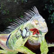 Iguana Midnight Snack Art Print