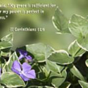 II Corinthians 12 Vs 9 Lavender Flower Art Print