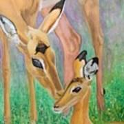 Impala Doe And Fawn Art Print