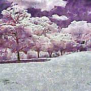 Impresionist Garden Art Print