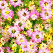 Impressionist Floral Ix Art Print