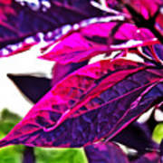 Impressionistic Purple Leaves Art Print