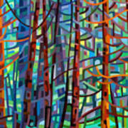 In A Pine Forest Art Print