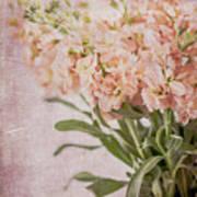 In A Vase #2 Art Print