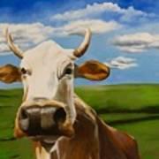 In Pasture Art Print