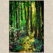 In The Forest With Words Art Print