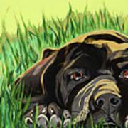 In The Grass Art Print
