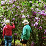 In The Lilac Garden Art Print