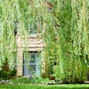 In The Weeping Willows Art Print