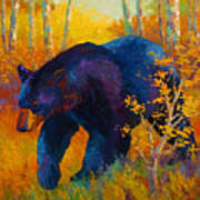 In To Spring - Black Bear Print by Marion Rose