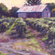 In Wine Country Art Print by Michael Camp