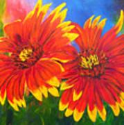 Indian Blanket Flowers Art Print