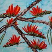 Indian Coral Tree Art Print