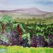 Pete Gay Mountain, Indian Lake Overlook Panorama 1 Art Print