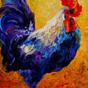 Indy - Rooster Art Print