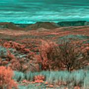 Infrared Arizona Art Print