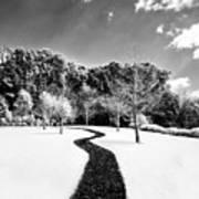 Infrared Parkland Art Print